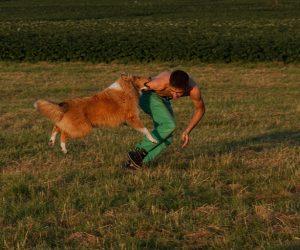 Kako dresirati psa da ne grize