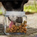 Dehidrirana hrana za pse