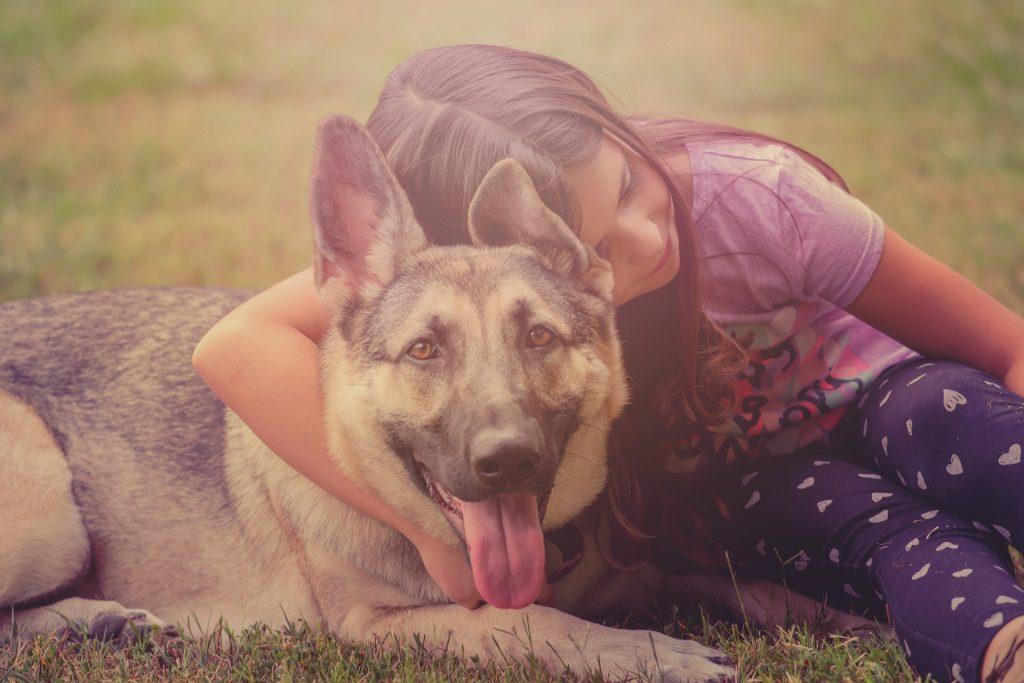 Najbolji prijateljski psi