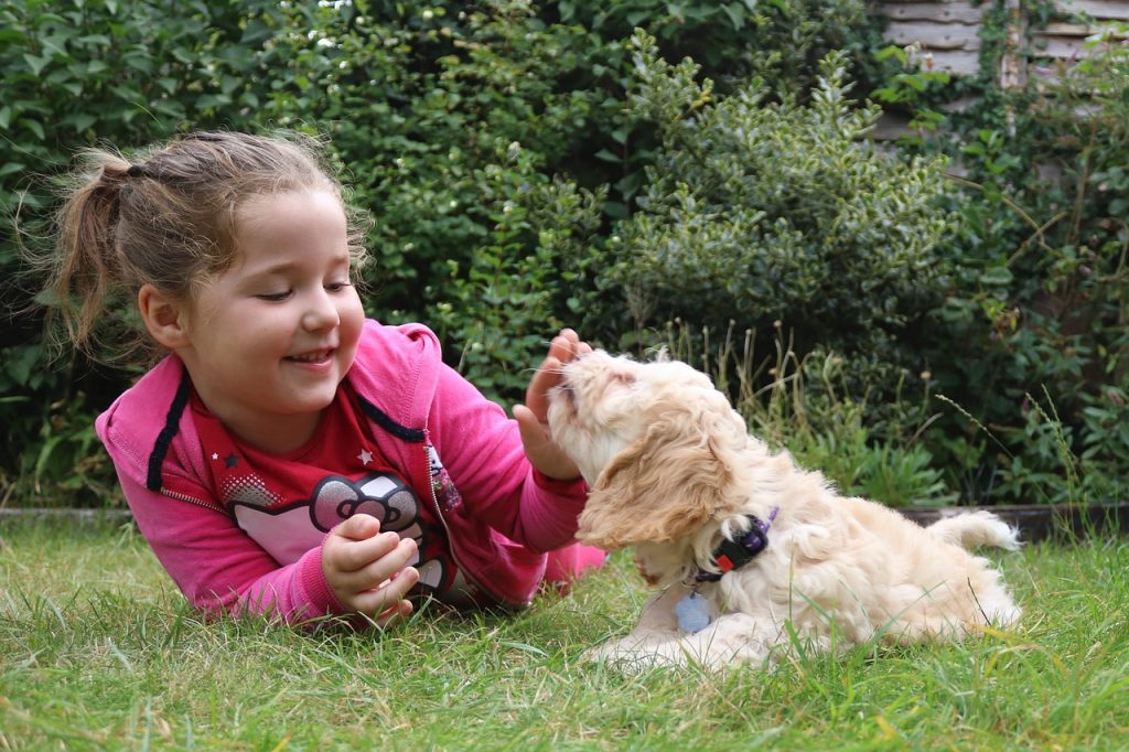 Top 10 najboljih pasmina pasa za djecu