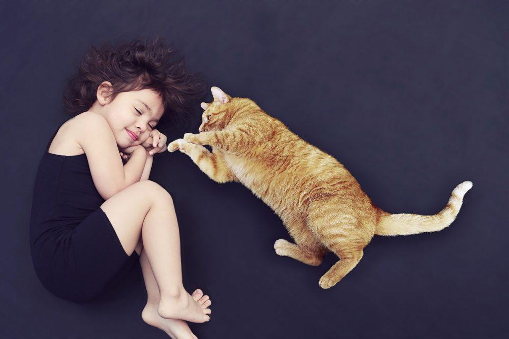 Mačka Spava s Vama