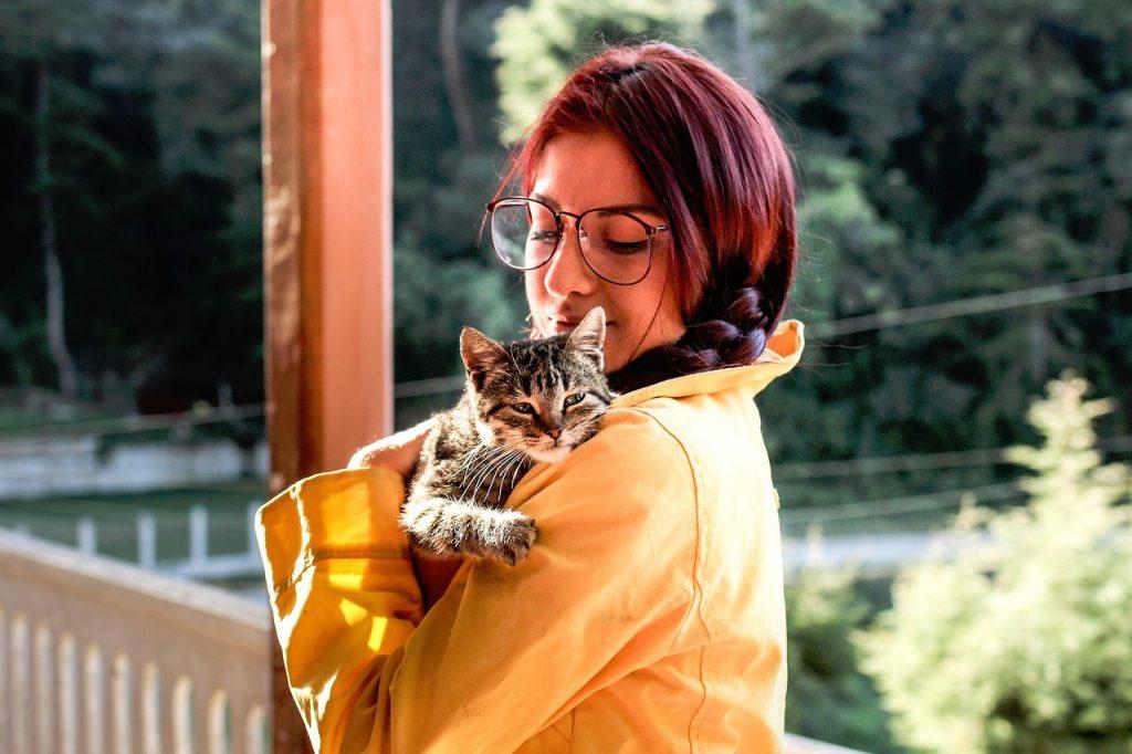 Voli Li Vas Mačka