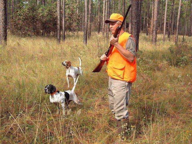 Najbolji lovački psi na svijetu