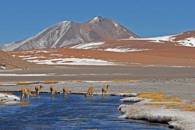 Runo Alpaka otporno je na vodu