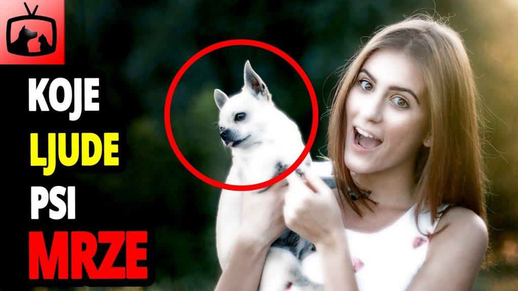 Top 10 stvari koje psi najviše mrze kod ljudi