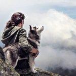 Top 10 pasmina pasa koje najčešće bježe od kuće - Kucni Ljubimci TV
